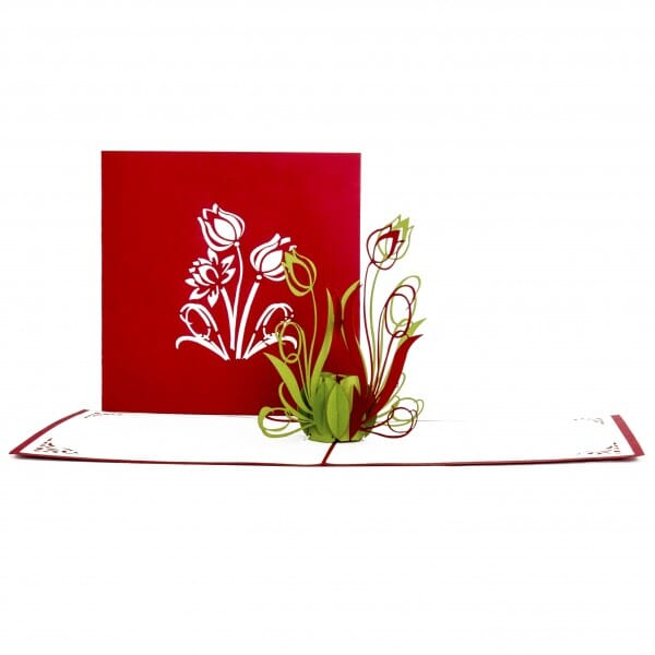 Colognecards Pop-Up Karte Tulpen rot