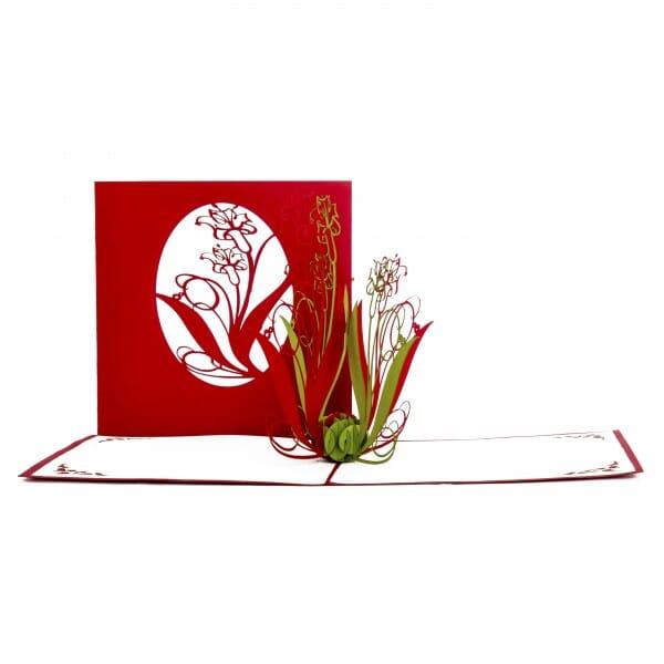 Colognecards Pop-Up Karte Schwertlilien rot